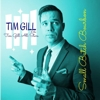 tim gill - small batch bourbon - cover art